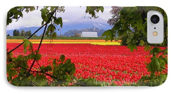 Tulips Secret Window Phone Case by Louise Magno