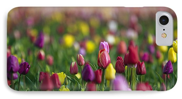 Tulips IPhone Case by William Lee