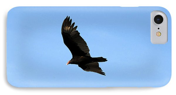Turkey Vulture Phone Case by David Lee Thompson