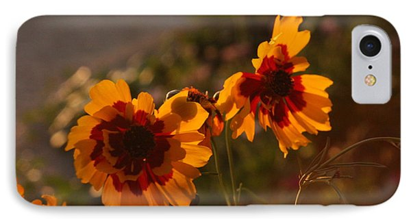 Turning Their Blossom Bottoms To The Setting Sun IPhone Case