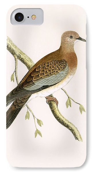 Turtle Dove IPhone Case by English School