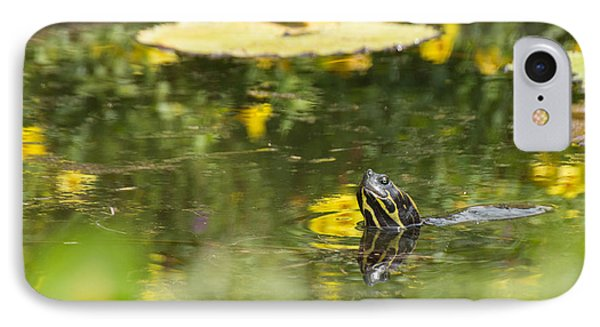 IPhone Case featuring the photograph Turtle  by Julie Andel