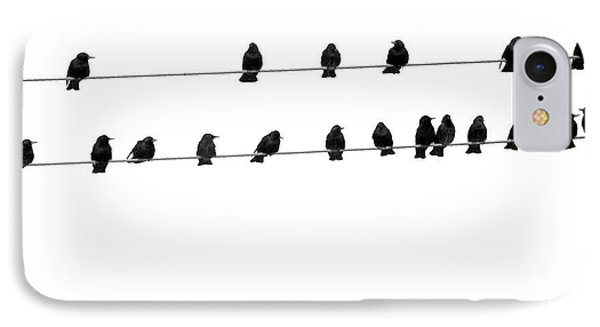 Twenty Blackbirds IPhone Case by Angie Rea