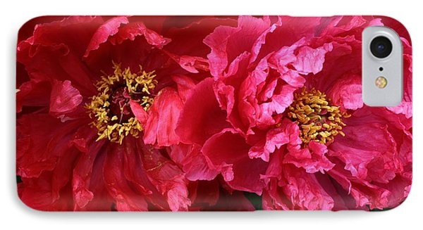 Twin Peonies IPhone Case by Bruce Bley