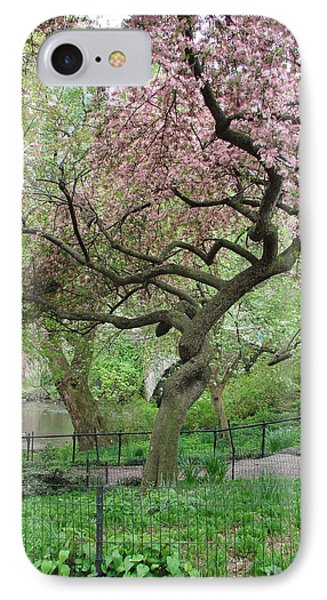 Twisted Cherry Tree In Central Park IPhone Case by Margaret Bobb