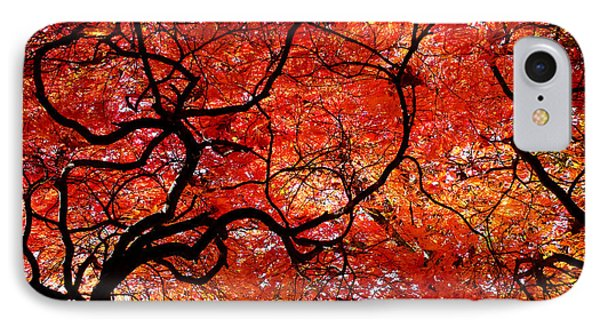 Twisted Red IPhone Case by Colleen Kammerer