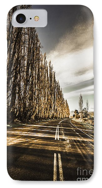 Twisted Roads And Dead Trees IPhone Case