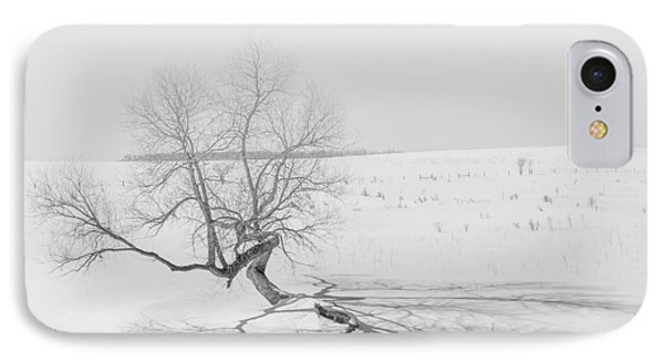 Twisted Tree IPhone Case by Dan Traun