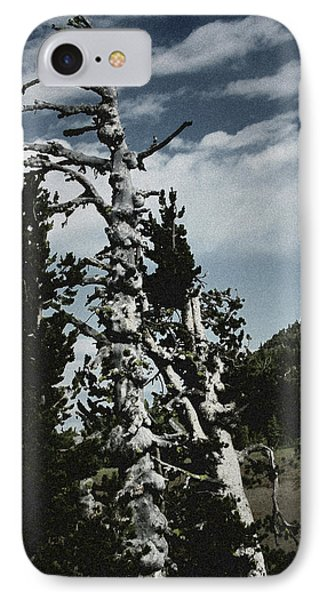 Twisted Whitebark Pine Tree - Crater Lake - Oregon Phone Case by Christine Till