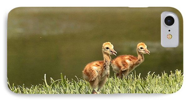 Two Chicks Phone Case by Carol Groenen