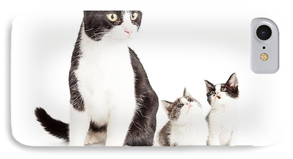 Two Cute Kittens Looking Up At Mom Cat IPhone Case