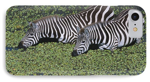 Two For Lunch Phone Case by Sandra Bronstein