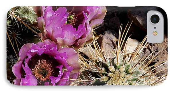 IPhone Case featuring the photograph Two Fucshia Blossoms  by Phyllis Denton