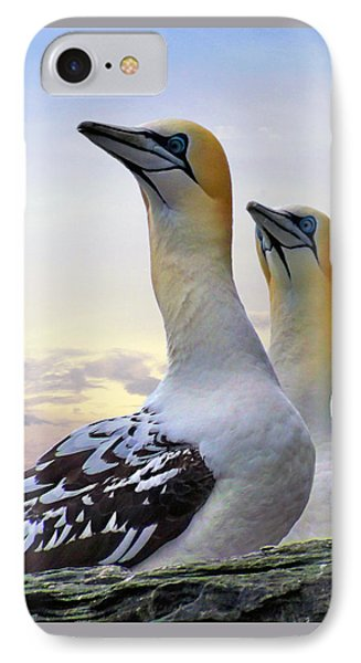 Two Gannets IPhone Case by Lynn Bolt