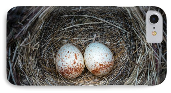 IPhone Case featuring the photograph Two Junco Eggs In The Nest by William Lee