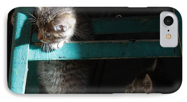 IPhone Case featuring the photograph Two Kittens With Turquoise Chair by Doris Potter