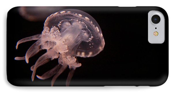 Two Moon Jellies IPhone Case