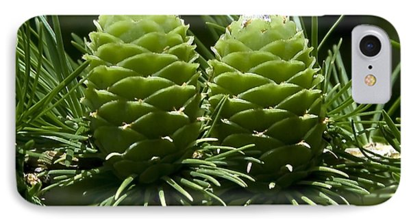 Two Pinecones Phone Case by Svetlana Sewell