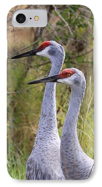 Two Sandhills In Green IPhone 7 Case