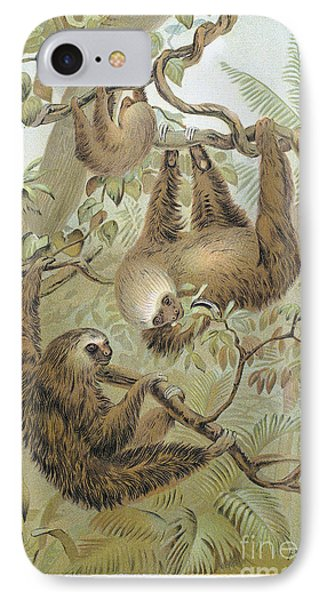 Two-toed Sloth Phone Case by Granger