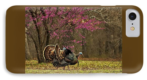 Two Tom Turkey And Redbud Tree IPhone Case by Sheila Brown