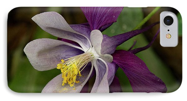 IPhone Case featuring the photograph Two Toned Columbine by Jean Noren