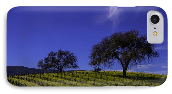 Two Trees In Vineyard IPhone Case by Garry Gay