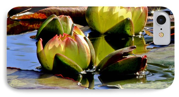 Two Water Lilies IPhone Case by Carol F Austin