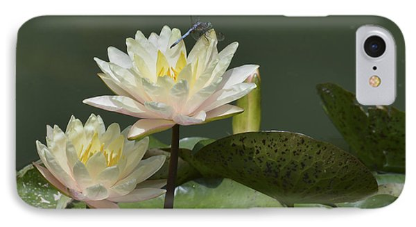 Two Yellow Water Lilies Phone Case by Linda Geiger