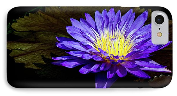 IPhone Case featuring the photograph Ultra Violet Tropical Waterlily by Julie Palencia