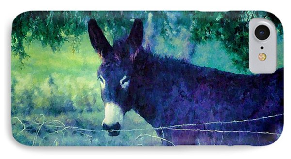 Under The Cedar IPhone Case by Jan Amiss Photography
