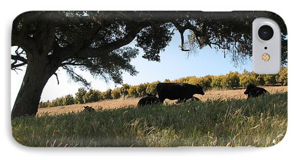 IPhone Case featuring the photograph Under The Oak Tree by Jan Cipolla