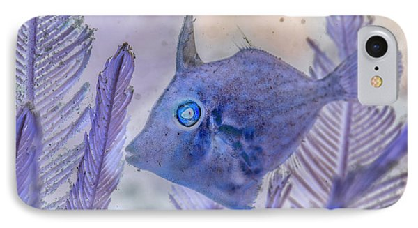 IPhone Case featuring the photograph Under The Sea Colorful Watercolor Art #8 by Debra and Dave Vanderlaan