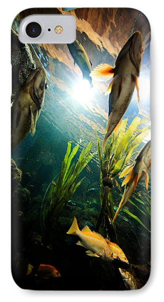 Under The Sea IPhone Case by Todd Klassy