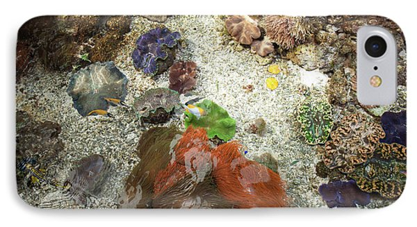 IPhone Case featuring the photograph Under Water Life by Carol Lynn Coronios