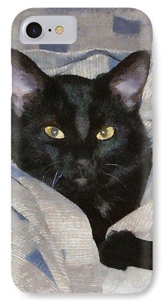 Undercover Kitten IPhone Case by Jeff Kolker