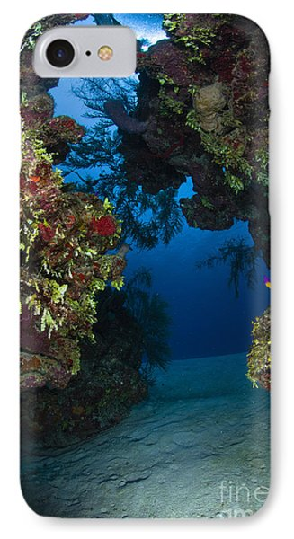 Underwater Crevice Through A Coral Phone Case by Todd Winner