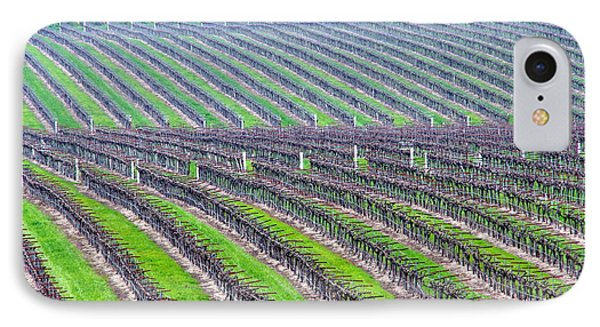 Undulating Vineyard Rows IPhone Case by Jeff Lowe