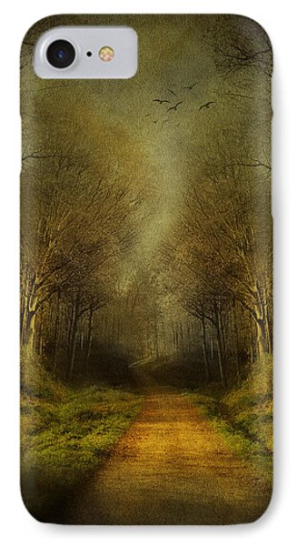 Unknown Footpath IPhone Case by Svetlana Sewell