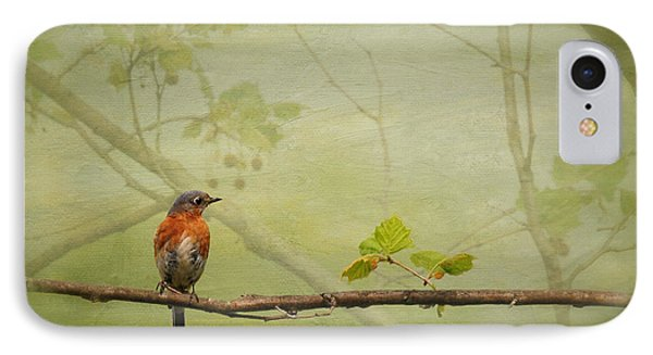 Until Spring IPhone Case by Lois Bryan