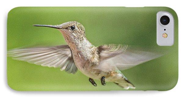 Untitled Hum_bird_three IPhone Case