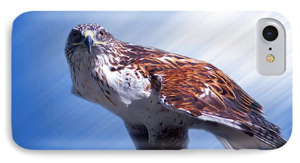 Upon His Perch IPhone Case by Greg Slocum