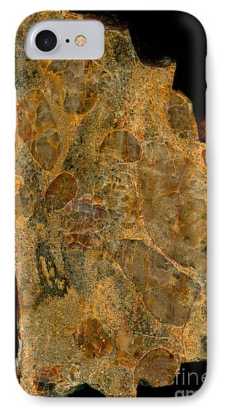 Uranium Ore Conglomerate Phone Case by Ted Kinsman