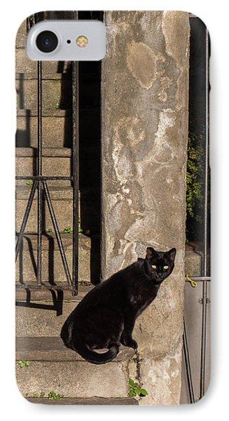 Urban Cat IPhone Case