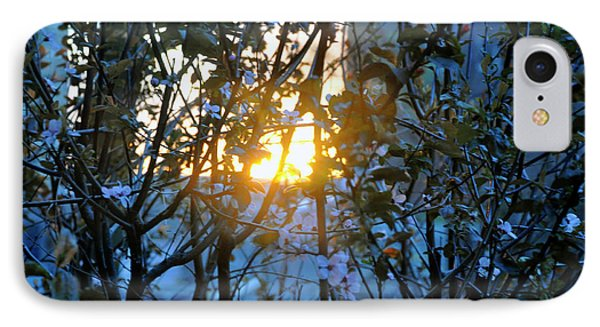 IPhone Case featuring the photograph Urban Sunset by Sarah McKoy