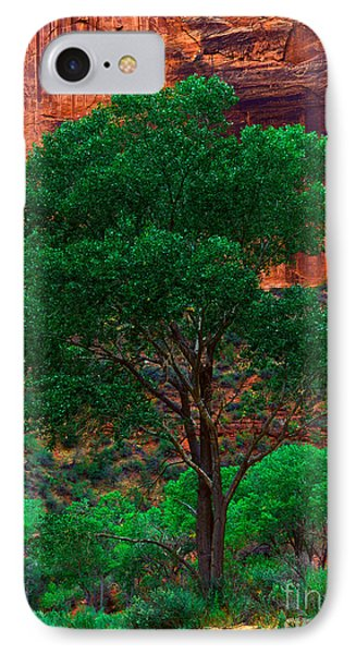 Utah - Cottonwood Phone Case by Terry Elniski