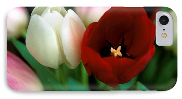 Valentine Tulips Phone Case by Kathy Yates