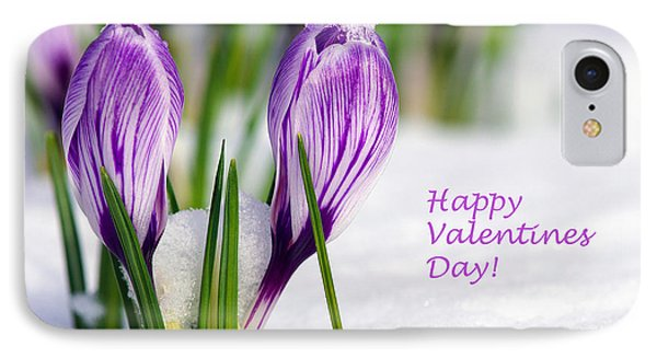 Valentines Day Crocuses IPhone Case by Sharon Talson