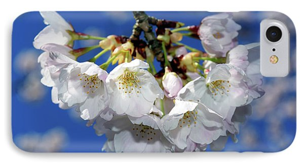IPhone Case featuring the photograph Vancouver 2017 Spring Time Cherry Blossoms - 11 by Terry Elniski