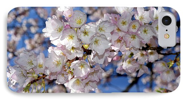 IPhone Case featuring the photograph Vancouver 2017 Spring Time Cherry Blossoms - 12 by Terry Elniski